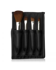 Mini Brush Kit