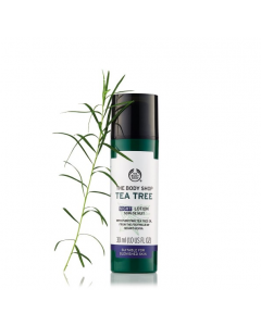 Tea Tree Night Lotion